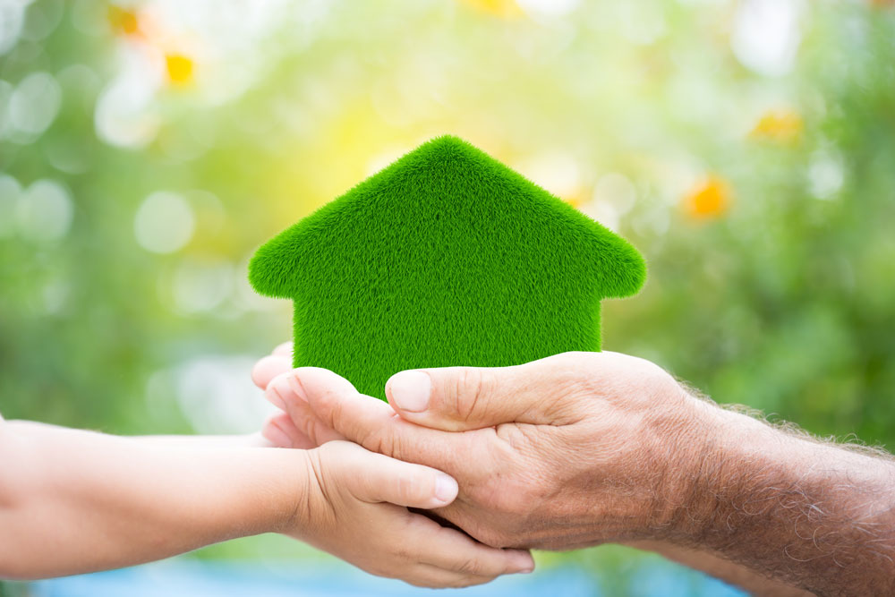4 Ways to Make Your Home More Eco-Friendly